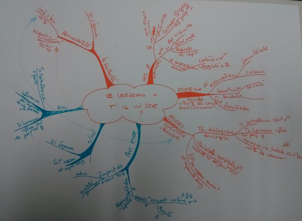 Camille Formation mind mapping Ajaccio